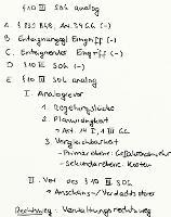 Tafelbild - § 10 III SOG analog