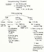 Tafelbild - Kostenentscheidung (Überblick)